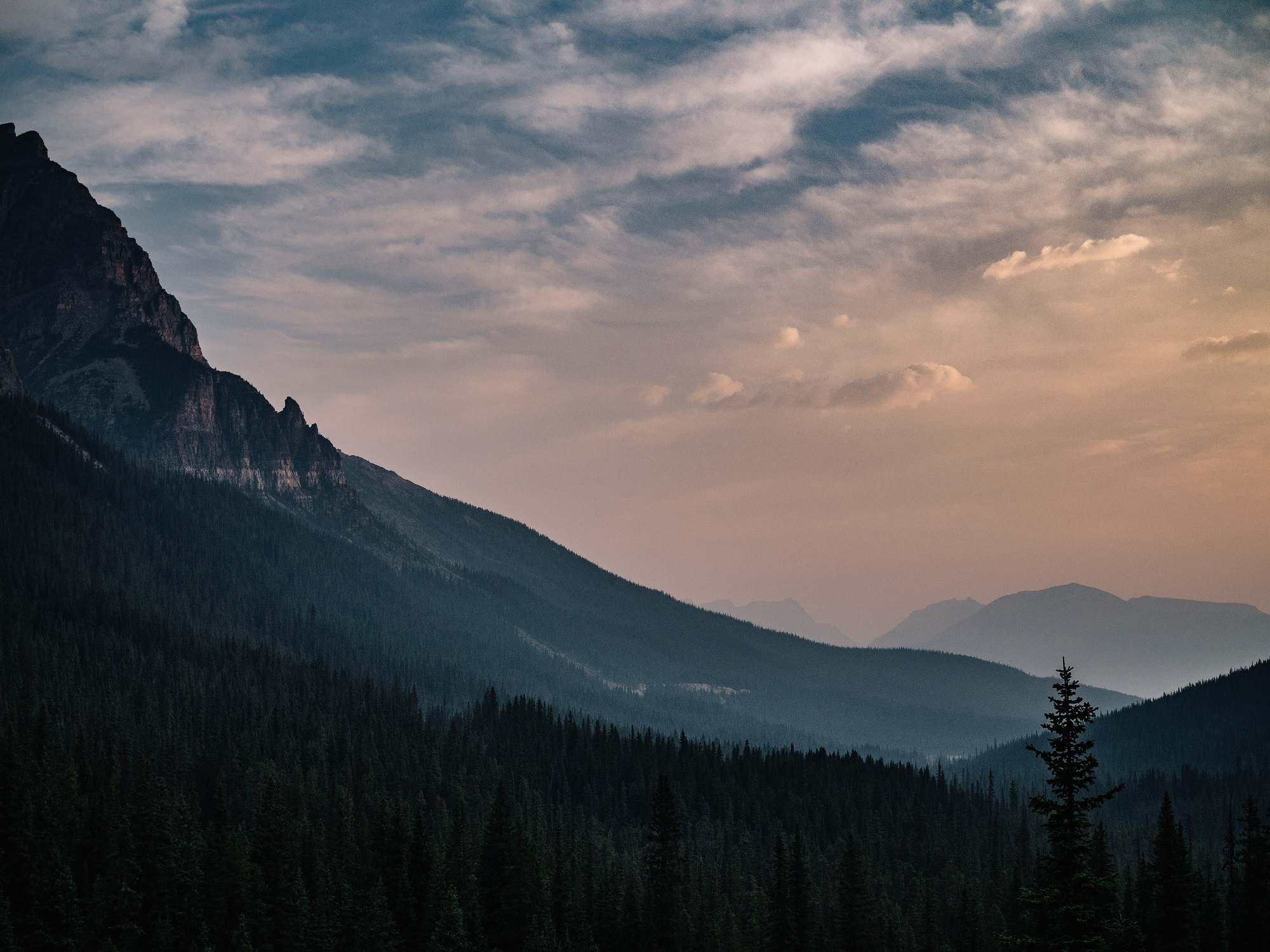 top 6 local attractions to see after relocating to bozeman mt